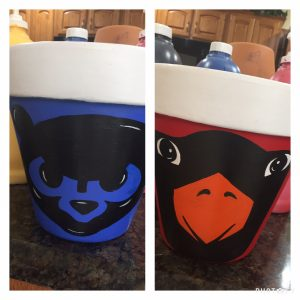Cub/Card Flower Pots